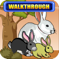 Bunny Forest Escape Walkthrough