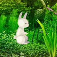 Easter Bunny Garden Escape