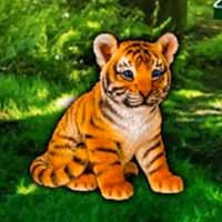 Help the Lonely Tiger Cub
