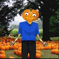 Save the Pumpkin Man