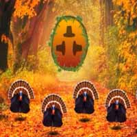 Thanksgiving Forest Escape 2019
