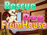 Rescue Dog from House